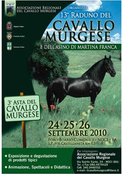 Successo di EQUITABILE al 13° Raduno del Cavallo Murgese