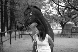 benessere e cavalli
