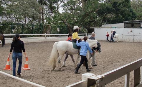 cavallo ippoterapia
