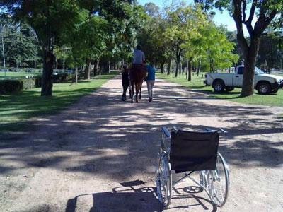 passeggiate-a-cavallo-per-d