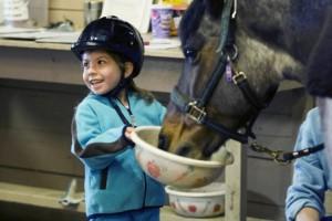 bimba che alimenta il suo pony