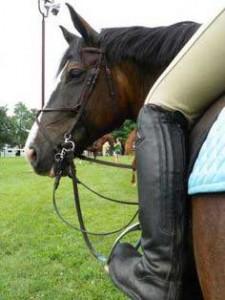 benefici-equitazione