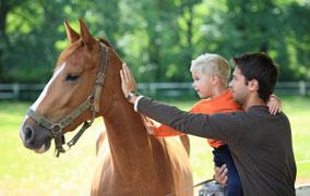 avvicinamento-al-cavallo