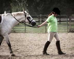 condurre-a-mano-il-cavallo