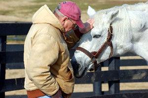 anziani-e-ippoterapia