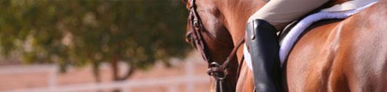 benefici-di-andare-a-cavallo