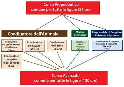formazione-linee-guida-interventi-assistiti-animali